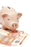 Piggy bank. Pink piggy bank with paper euro banknotes Royalty Free Stock Photo
