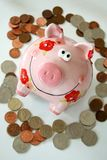 Piggy Bank. In a circle of coins stock image