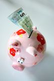 Piggy Bank. With a UK five pound note royalty free stock image