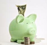 Piggy Bank. Stuffed with money and surrounded by coins Stock Photography