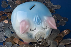 Piggy Bank From Above With Coins Stock Photography