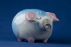 Piggy Bank Alone Stock Images