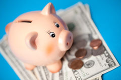 Piggy bank with american currency Stock Images