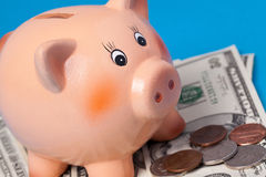 Piggy bank with american currency Stock Photos