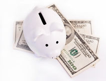 Free Piggy Bank And Money Stock Images - 20447064