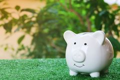 Piggy bank on artificial grass under warm tone. Savings and investment concept. Copy space royalty free stock photos
