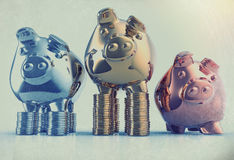 Piggy bank as concept Stock Photos