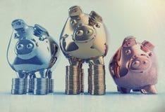 Piggy bank as concept Stock Photos