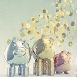 Piggy bank as concept Stock Image