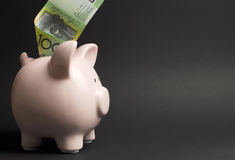 Piggy Bank with Australian hundred dollar note - with copy space Royalty Free Stock Images