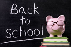 Piggy Bank back to school message, education costs concept Stock Image