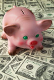 Piggy bank. On the  background Stock Photos