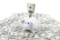 Piggy Bank on the background of a stack of dollar bills.  Royalty Free Stock Photo