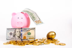 Piggy bank and banknote,coin,egg Stock Photography