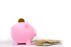 Piggy bank and banknote,coin,egg Royalty Free Stock Photography