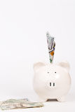 Piggy bank and banknote Royalty Free Stock Photos