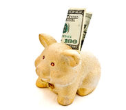 piggy bank and banknotes Stock Photography