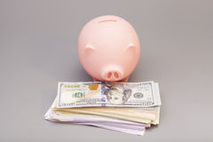 Piggy bank with  banknotes Stock Photos