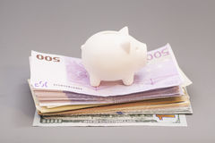Piggy bank on  banknotes Royalty Free Stock Photo
