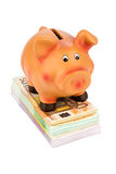 Piggy bank on banknotes Royalty Free Stock Image