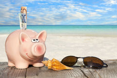 Piggy Bank with banknotes and Sunglasses Stock Images