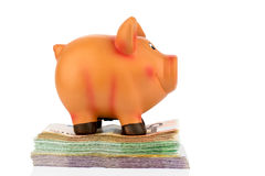 Piggy bank on banknotes Stock Photography