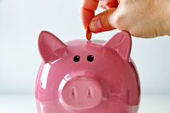 Piggy bank being loaded Stock Photos