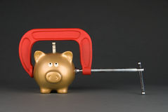Free Piggy Bank Being Squeezed Stock Photo - 12225550