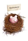 Piggy bank in bird's nest. Retirement nest egg, piggy bank in bird's nest Stock Photography