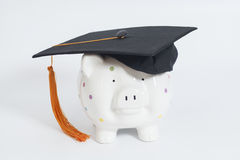 Piggy bank with black graduation hat Stock Photography
