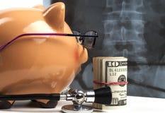 Piggy Bank Xray Exam Stock Images