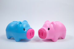 Piggy bank. Blue and pink piggy bank, financial concept Royalty Free Stock Images