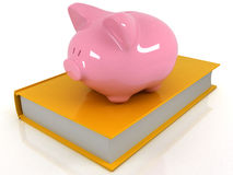 Piggy bank on the book Stock Image