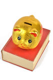 Piggy bank and book. A golden piggy bank and a book on white background Stock Image