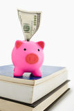 Piggy bank and book Royalty Free Stock Photos