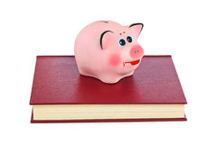 Piggy bank and books Royalty Free Stock Photos