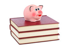 Piggy bank and books Royalty Free Stock Image