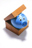 Piggy Bank in Box Royalty Free Stock Photo