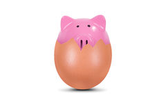 Piggy Bank in Broken Egg Royalty Free Stock Photos