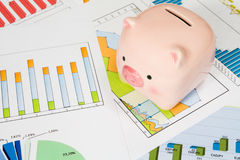 Piggy bank with business charts Royalty Free Stock Images