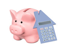 Piggy bank and calculator Stock Images