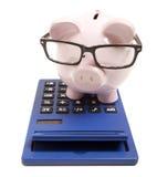 Piggy bank and calculator Stock Image