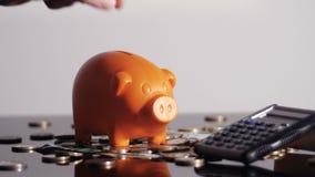 Piggy bank and calculator. Saving money. Piggy bank and calculator stock video footage