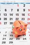 Piggy Bank on Calendar Pages Stock Images