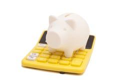 Piggy bank and callculator Stock Photos