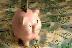 Piggy Bank With Canadian Cash. Pink porcelain piggy bank with Canadian bills of 20 dollars royalty free stock image