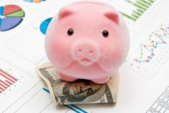 Piggy bank and charts Stock Images
