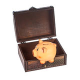 Piggy bank in chest Royalty Free Stock Photos