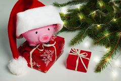 Piggy bank Christmas for your big buy gifts Stock Photo