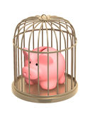 Piggy bank closed in a cage Stock Images